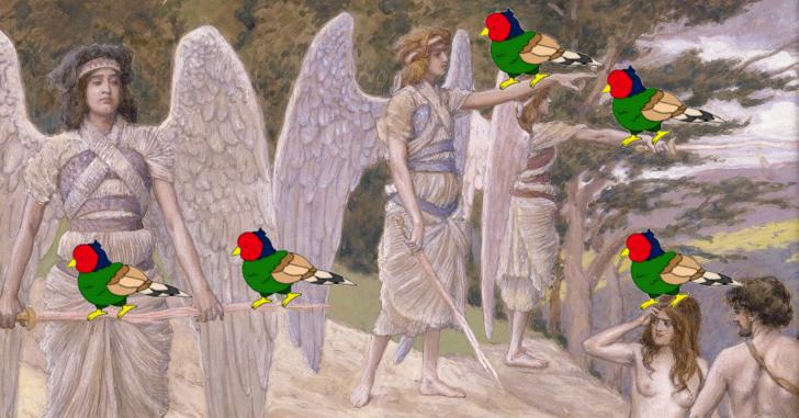 鳥天国アイキャッチ