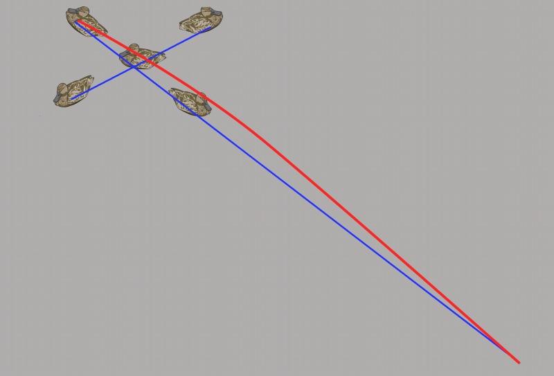カモの移動イメージ