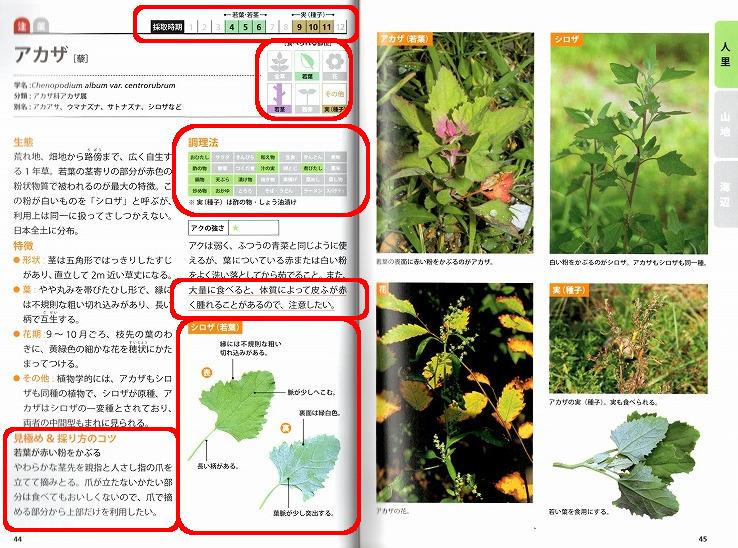 「山菜採りの教科書」の一部