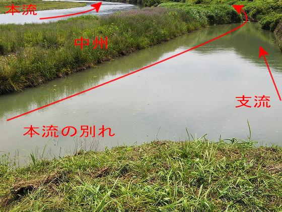 スッポンを釣った場所 川の流れも表示